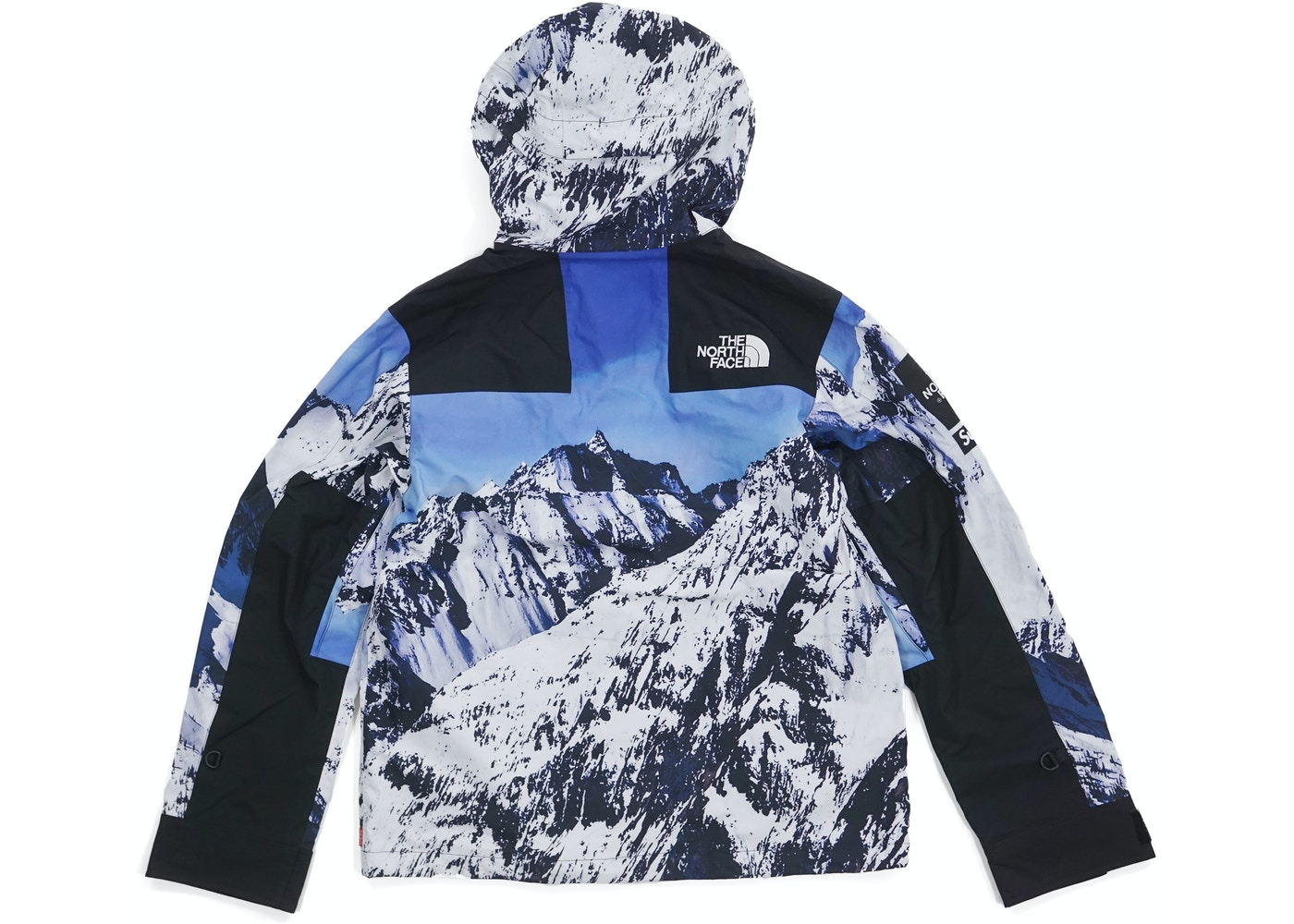 Supreme The North Face Mountain Parka